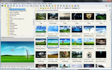 FastStoneImageViewer